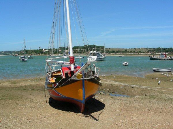 alvor-boats-ria-2