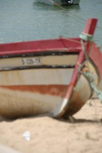 images/stories/slidealvor-alto-2/alvor-algarve-portugal-8.jpg